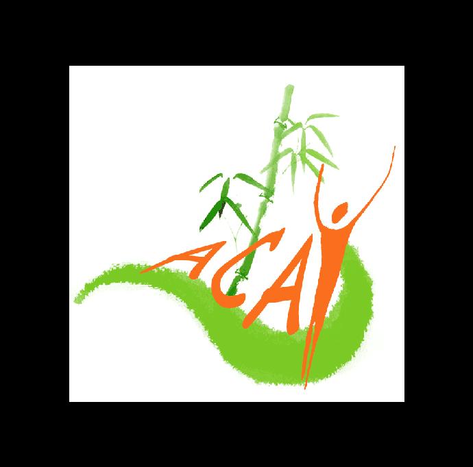 Acay logo
